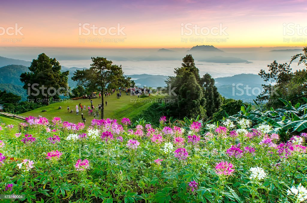 beautiful sunrise at viewpoint of huay nam dung national park stock photo