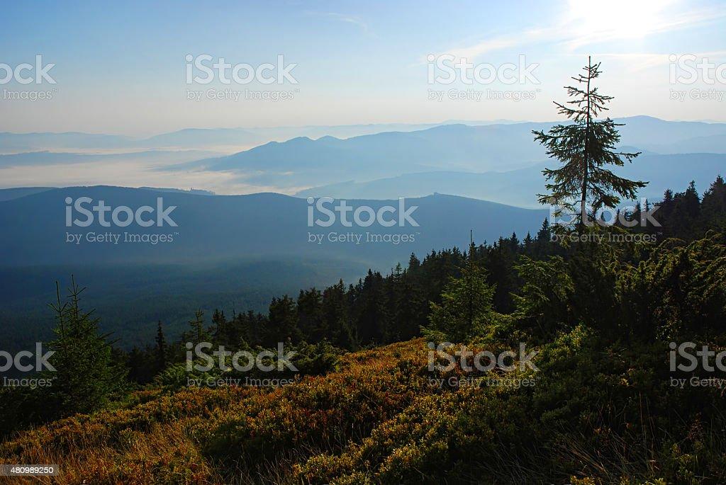 Beau lever de soleil dans les montagnes Carpathians. L'Ukraine. photo libre de droits