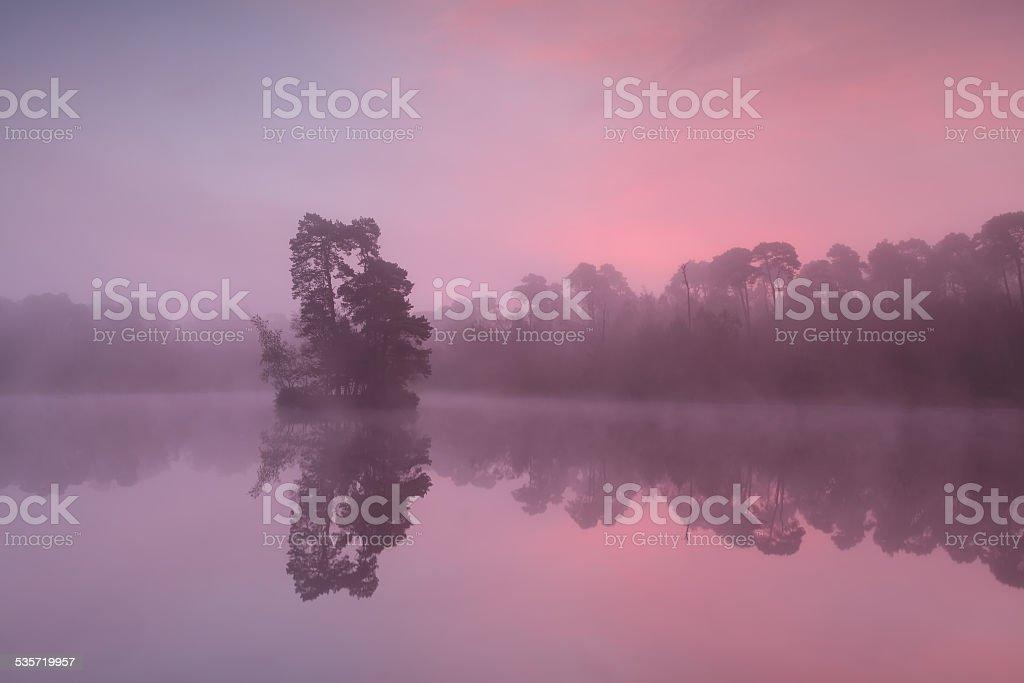 beautiful sunrise on forest lake stock photo