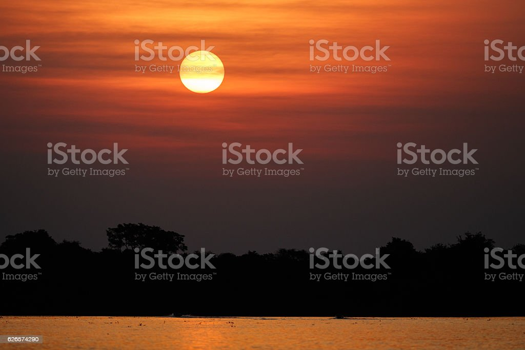 Beautiful sunset in northern Pantanal stock photo