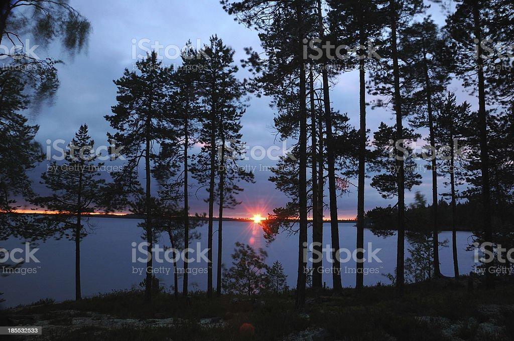 Beautiful sunset in pine forest,Karelia, Engozero lake,Nothern Russia royalty-free stock photo