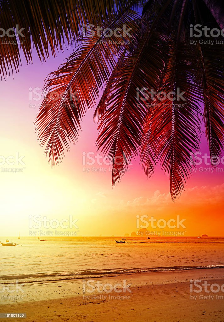 Beautiful sunset over beach, summer holidays background. stock photo