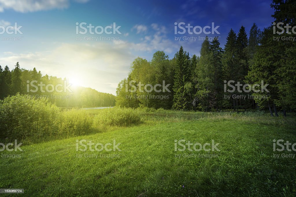 Beautiful sunset over forest lake stock photo
