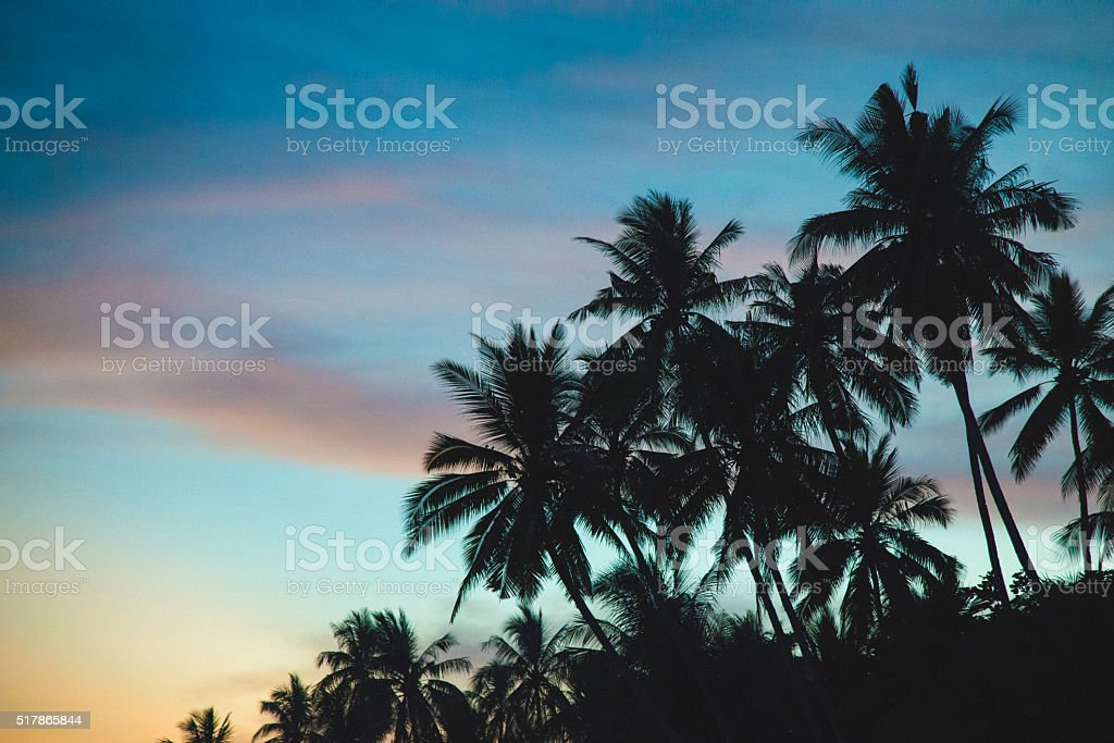 Beautiful sunset stock photo