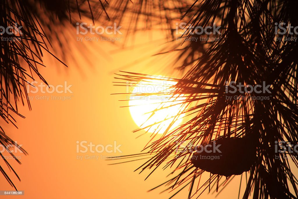Bellissimo tramonto  foto stock royalty-free