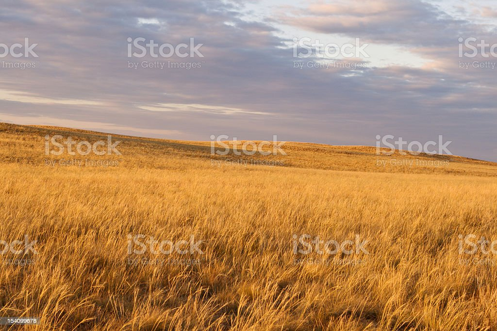 Beautiful sunset with heavy sky in steppe stock photo