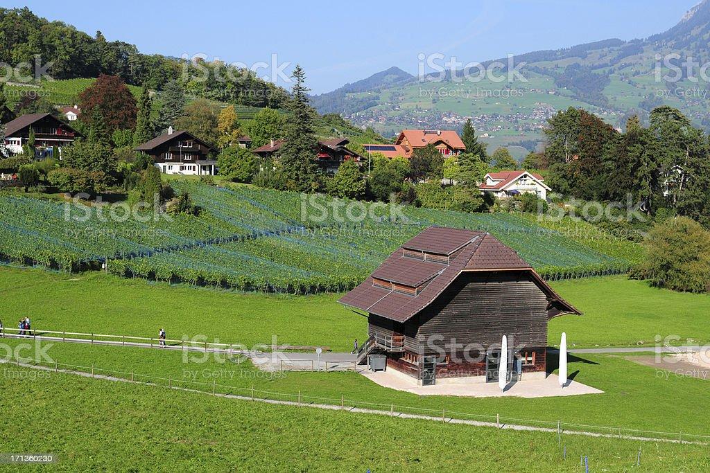 Beautiful Swiss Town and Vineyard - XLarge stock photo