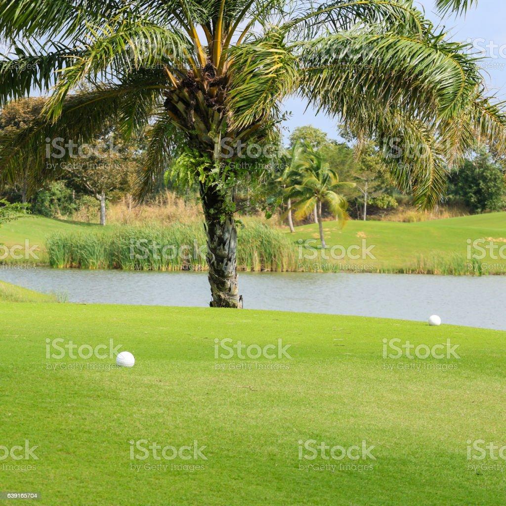 beautiful tee box in the golf course stock photo