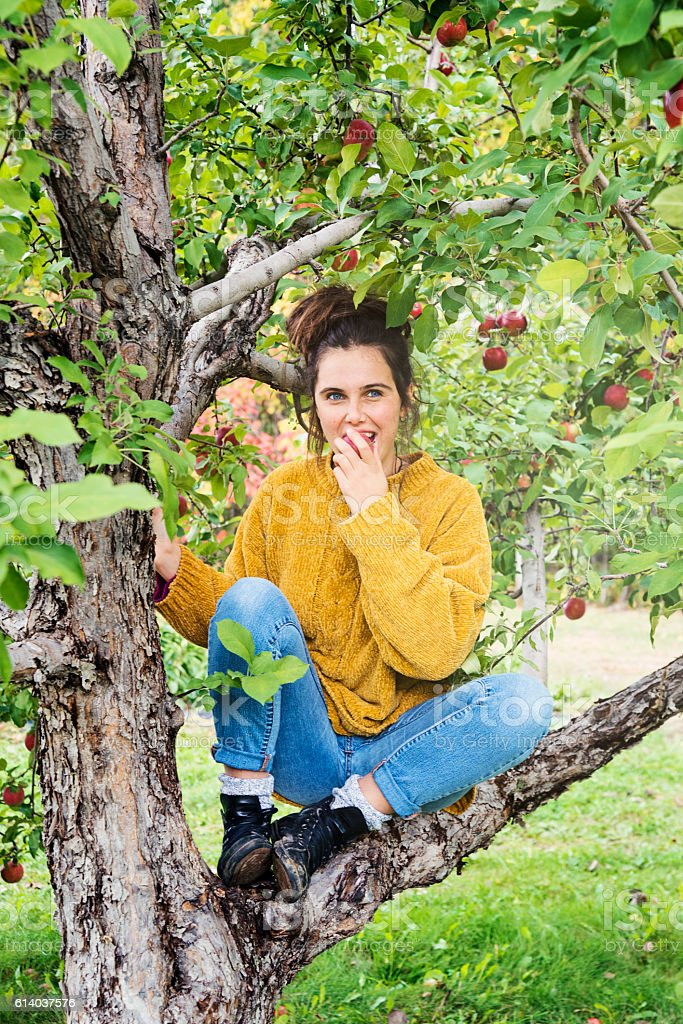 Beautiful teenager eating apple sitting on a tree branch. stock photo