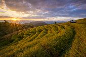 Beautiful terraced rice field in Mae Cham, Chaingmai, Thailand.