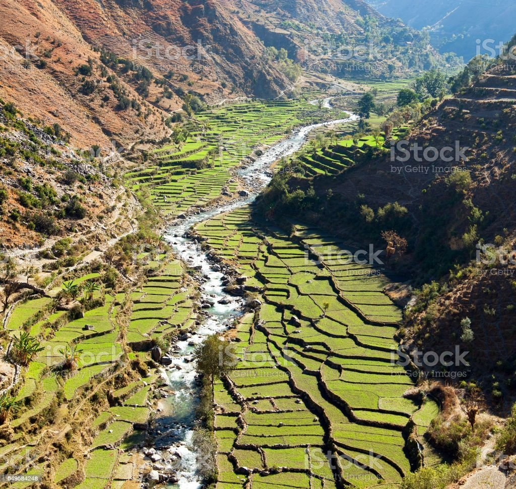 Beautiful terraced rice field in valley around river stock photo