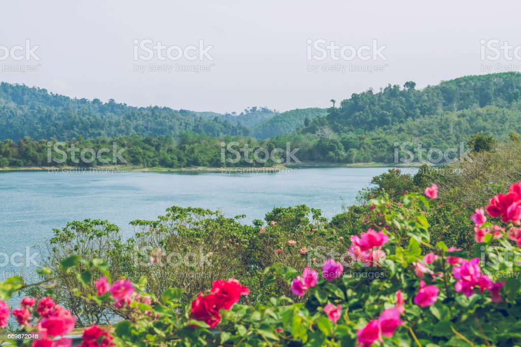 Beautiful Thailand Atmosphere and nature. stock photo