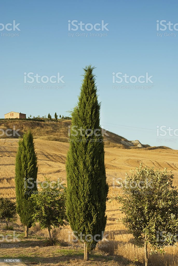 Beautiful Toscany royalty-free stock photo
