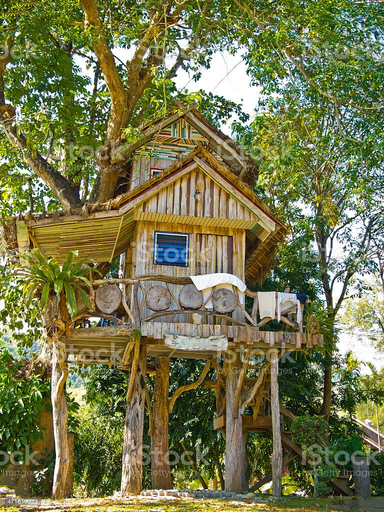 beautiful tree house stock photo
