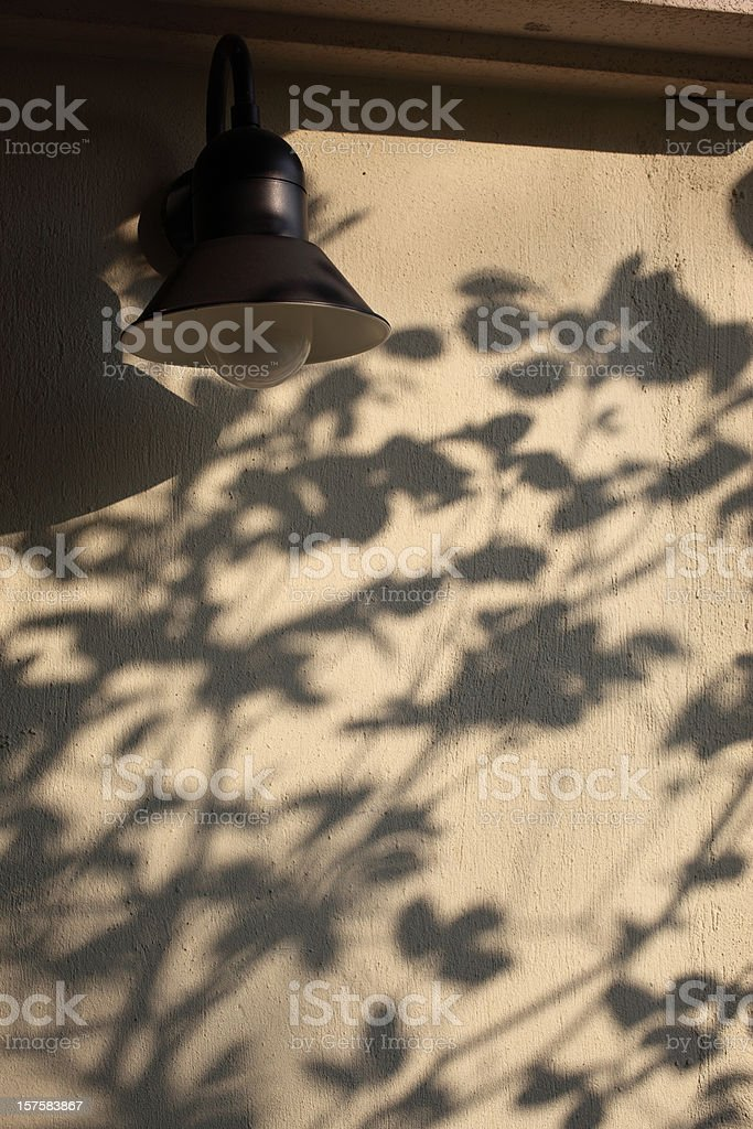 Beautiful Tree Shadows on Wall stock photo
