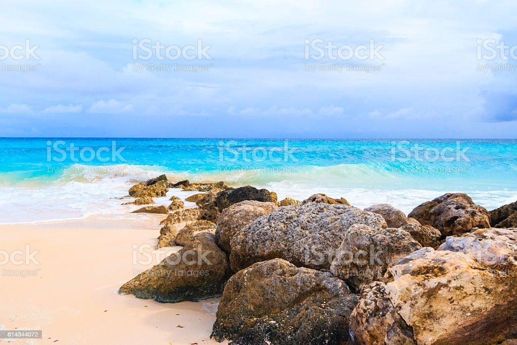 Beautiful tropical beach. stock photo