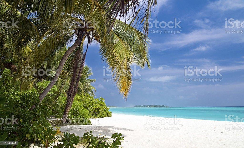 beautiful tropical beach royalty-free stock photo