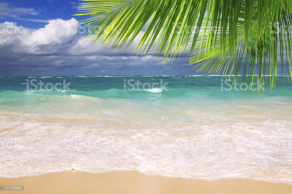 Beautiful tropical beach with clear ocean . royalty-free stock photo