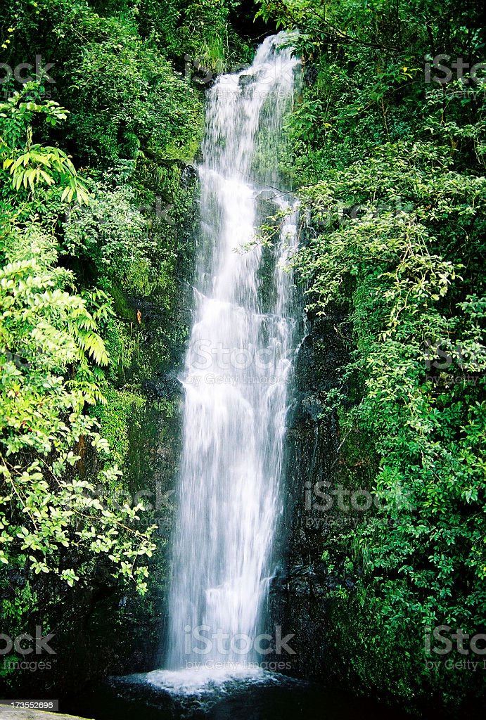 Beautiful Tropical Hana Maui Hawaii Waterfall stock photo