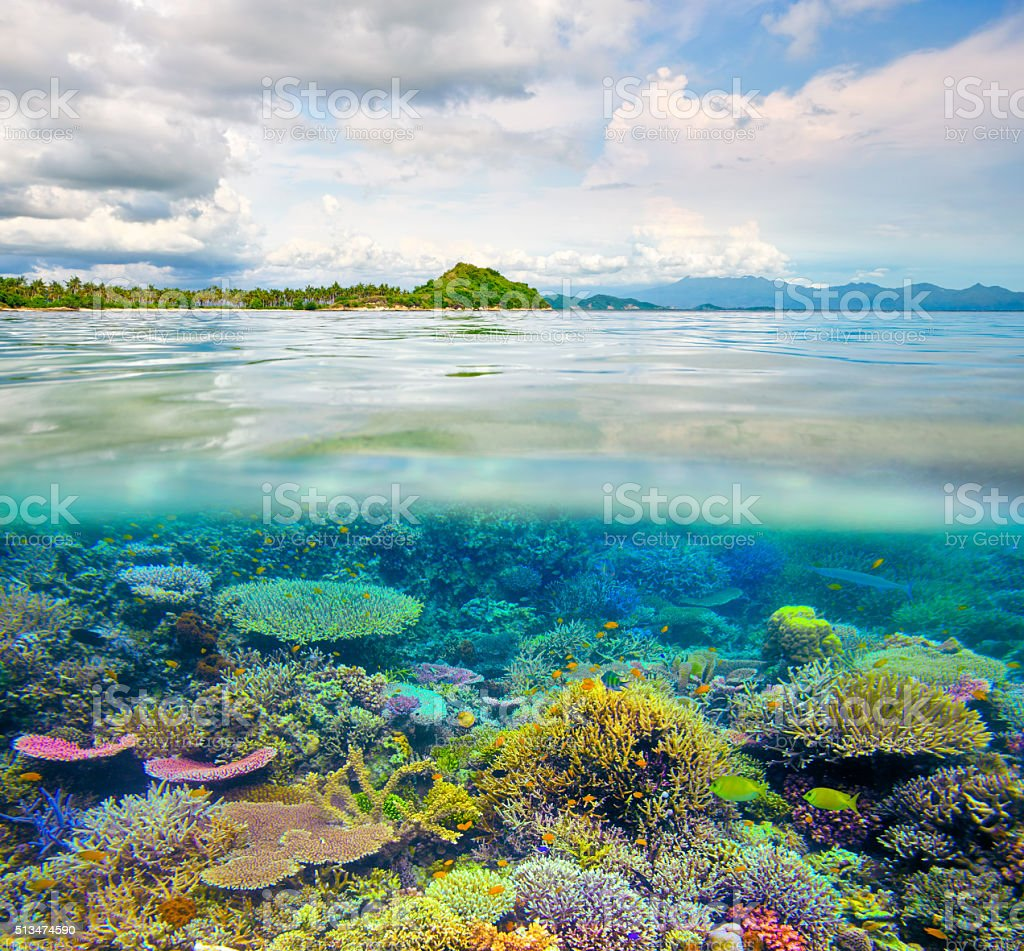 Beautiful tropical island and coral reef in clear waters stock photo