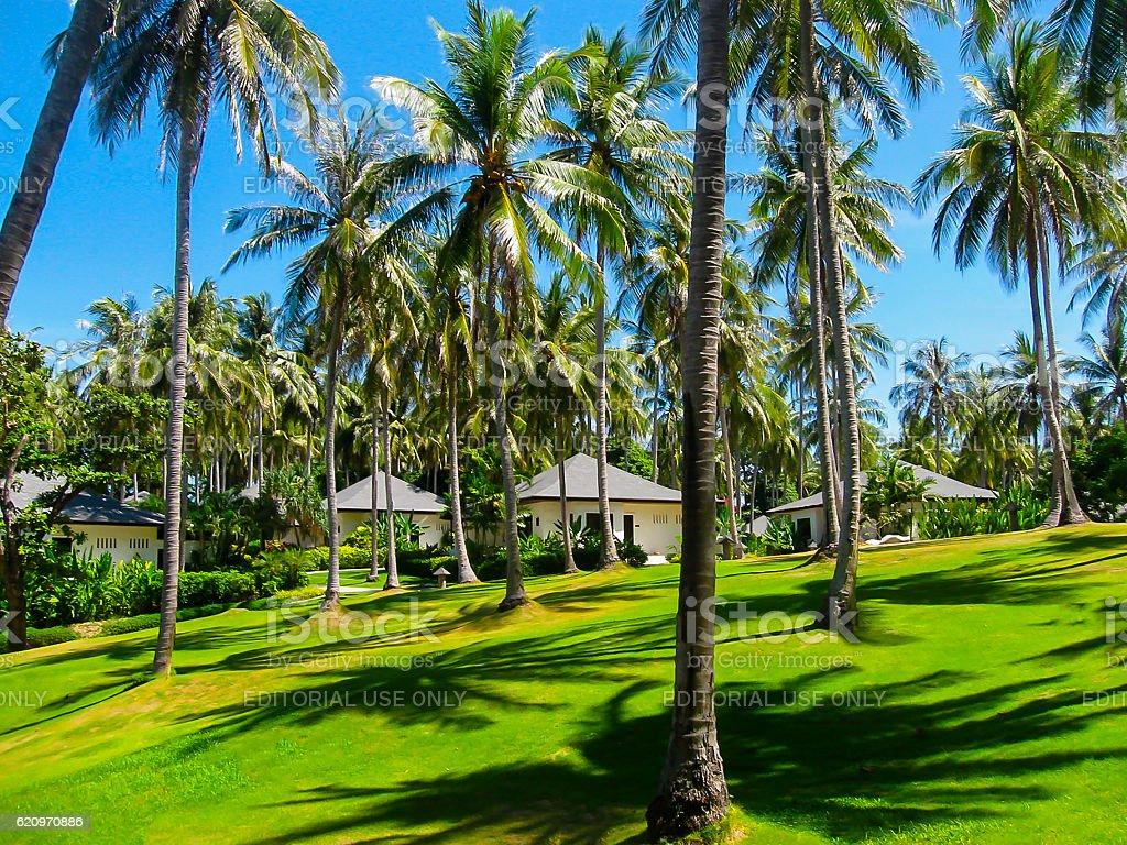Koh Racha Yai, Thailand - February 11, 2010: Beautiful tropical stock photo