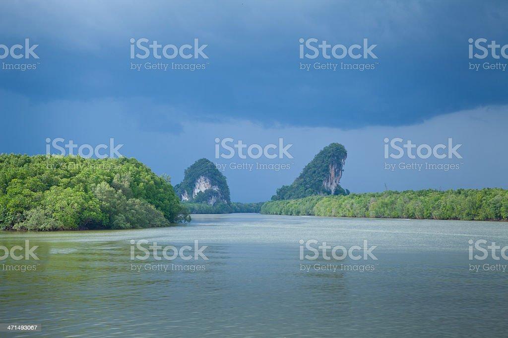 Beautiful tropical river royalty-free stock photo