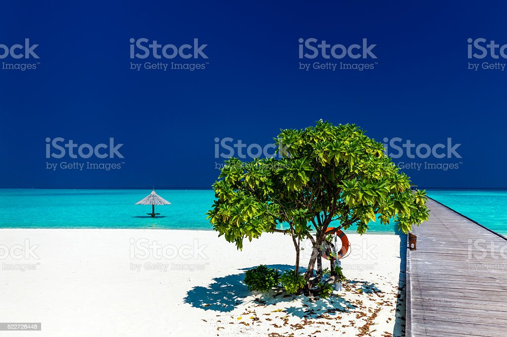 Beautiful tropical sandy beach with wodden jetty and single tree stock photo