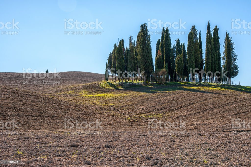 Beautiful tuscan landscape near San Quirico d'Orcia, with rolling hills and tuscan cypress trees. Located in Val D'Orcia countryside - Italy. stock photo
