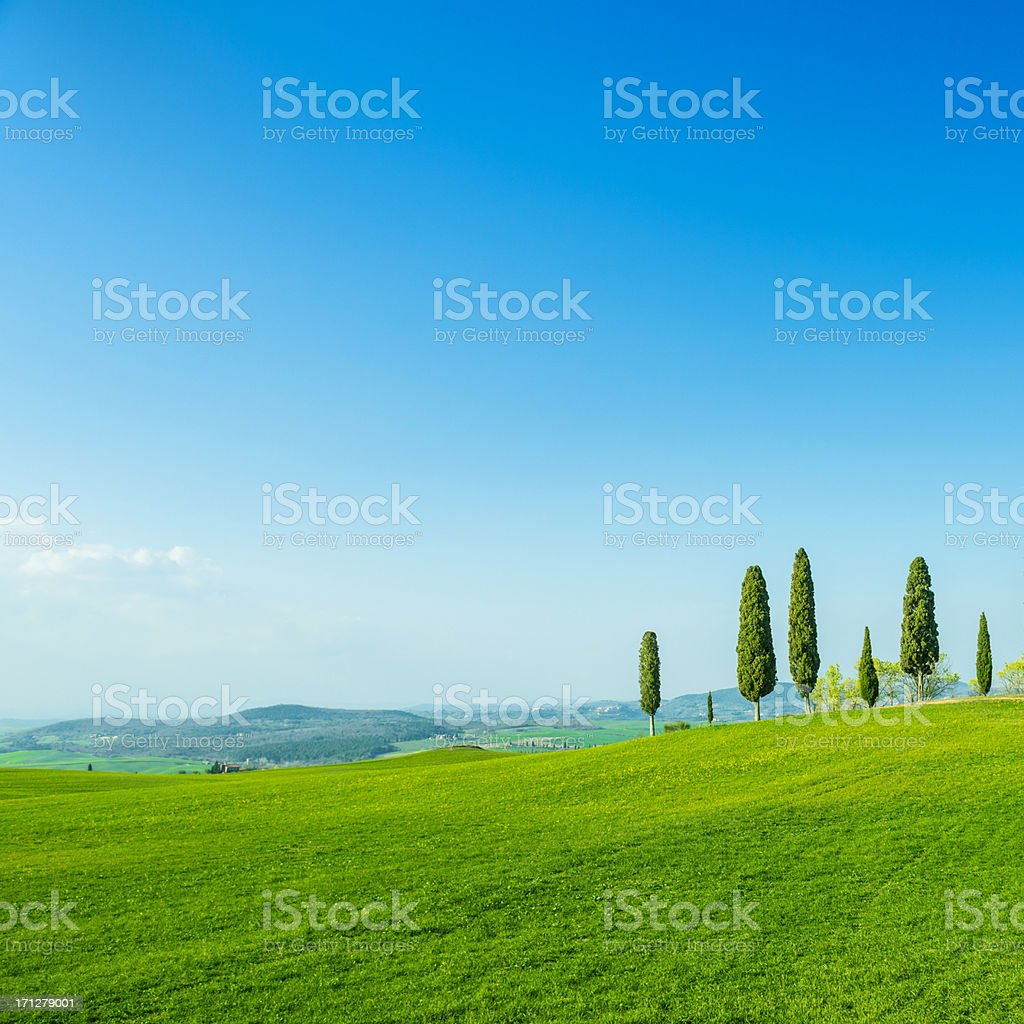 Beautiful Tuscany fields royalty-free stock photo