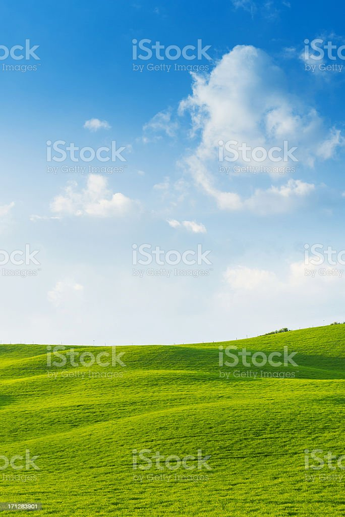 Beautiful Tuscany fields stock photo