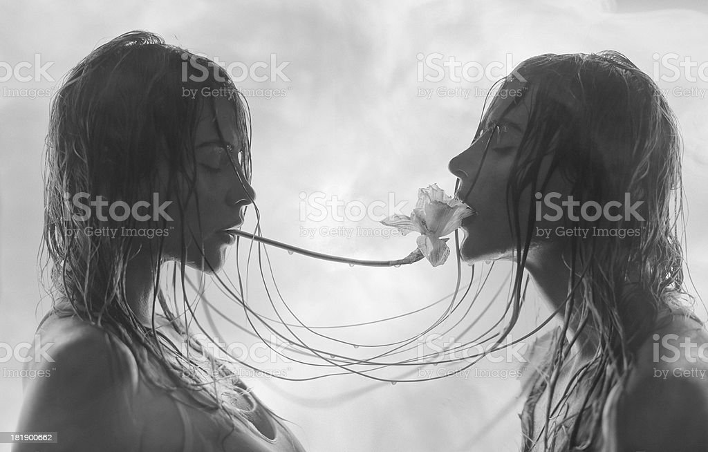 beautiful twins with flower stock photo