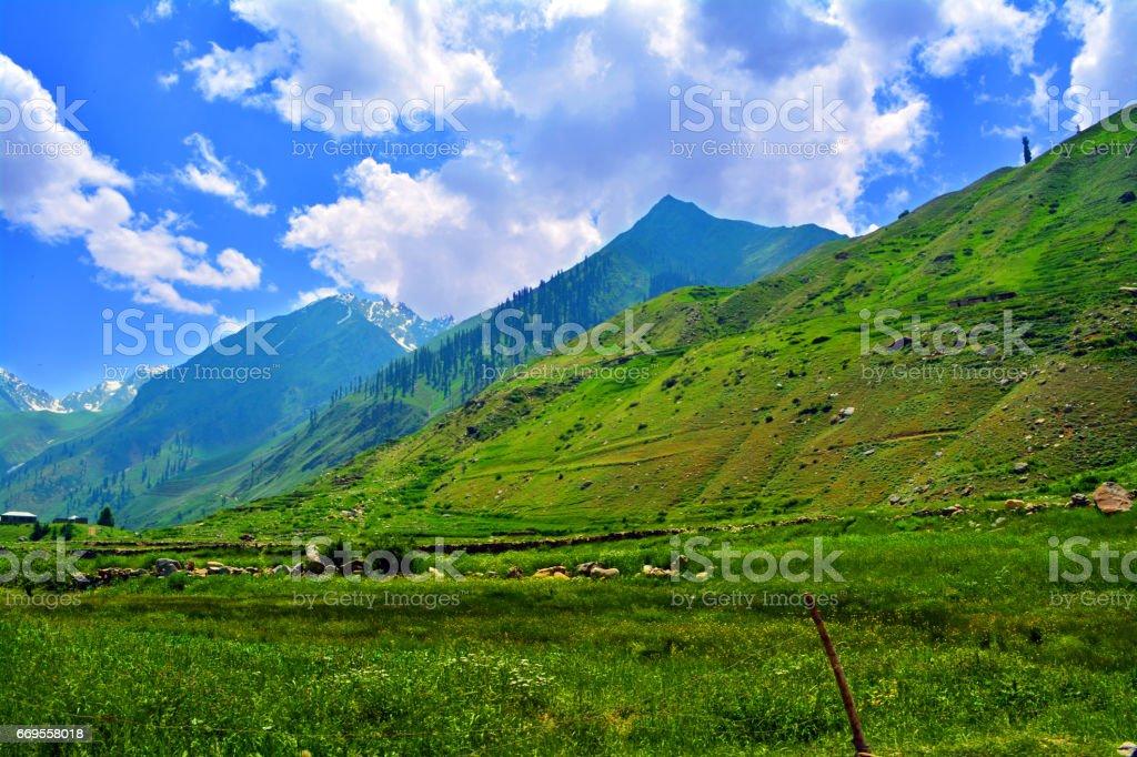Beautiful Valley stock photo