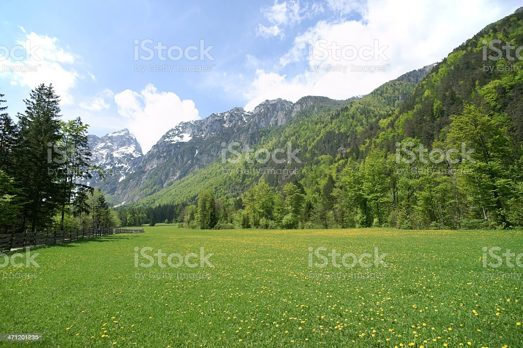 Beautiful valley with mountains royalty-free stock photo