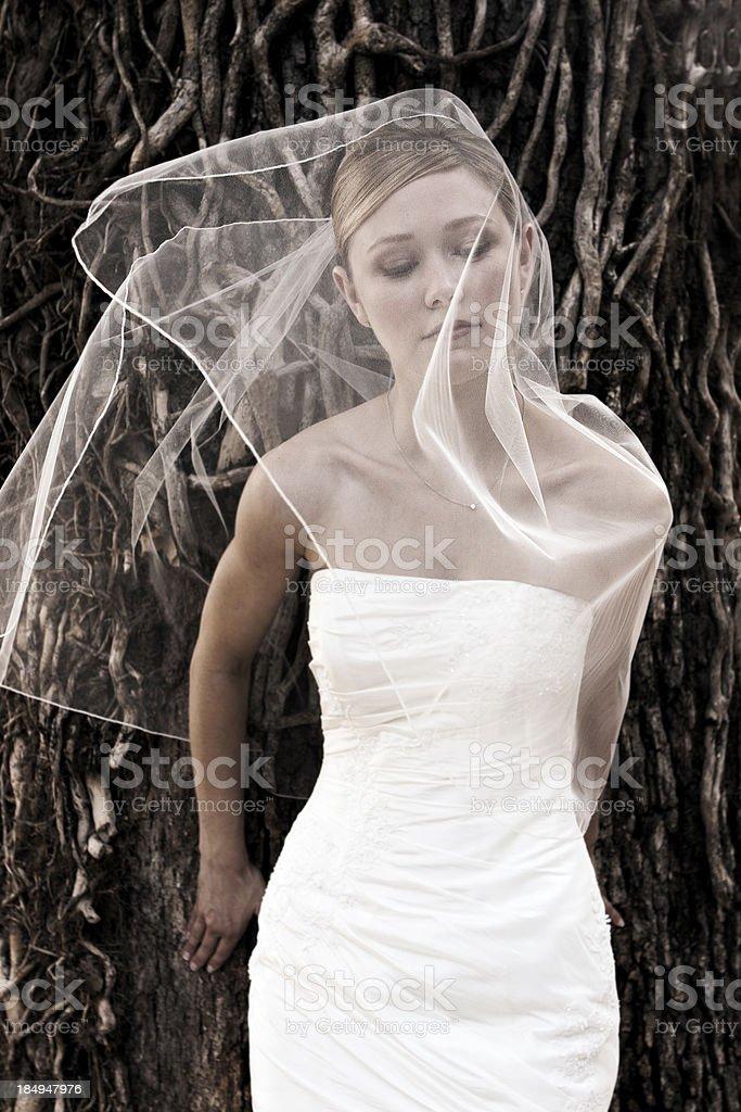 Beautiful Veiled Bride Art Pose stock photo