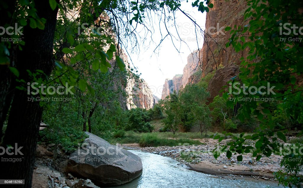 Beautiful Velley View in summer,Zion National Park stock photo