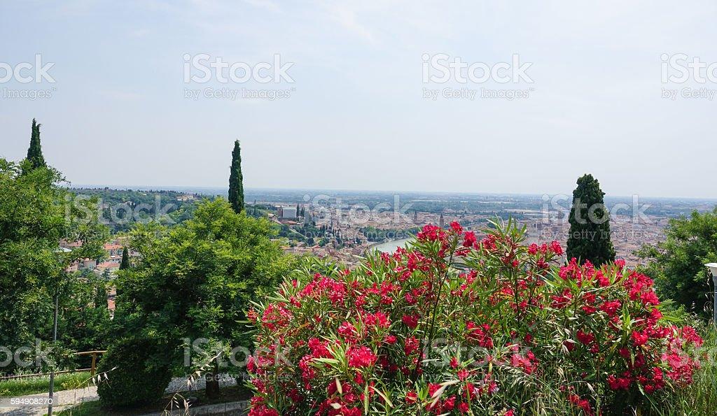 Beautiful Verona Italy - view from a hill Lizenzfreies stock-foto