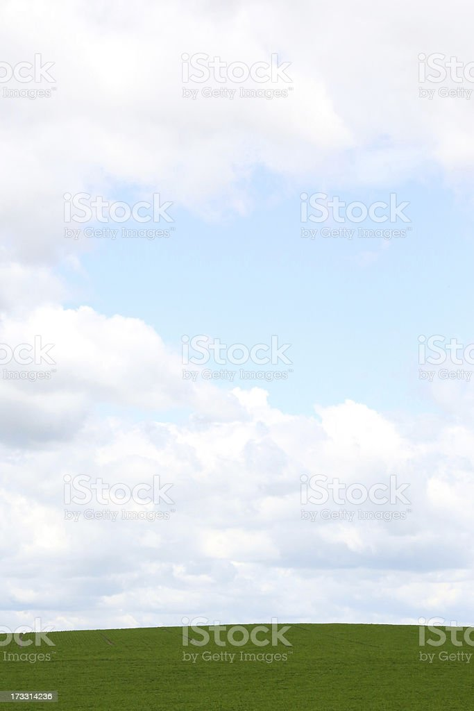 Beautiful vertical sky and field in nature royalty-free stock photo
