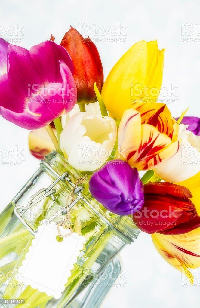 Beautiful Vibrant Tulips in Jar royalty-free stock photo