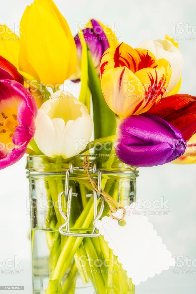 Beautiful Vibrant Tulips in Jar royalty-free stock photo