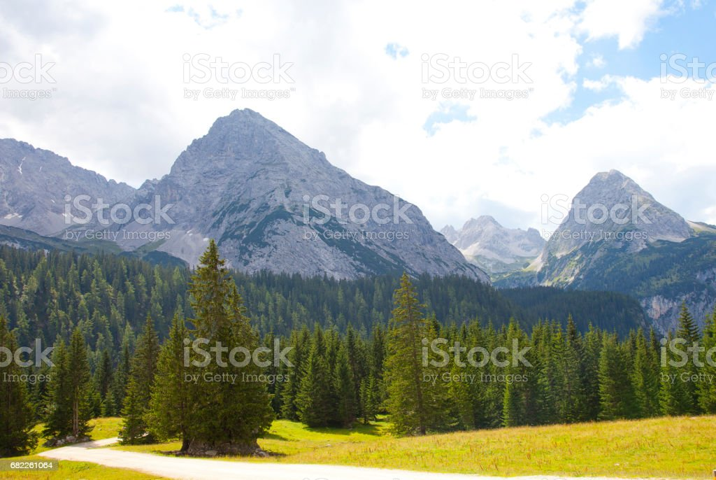 Beautiful view at mountains in summer in  near Ehrwald, Tirol, Austria stock photo