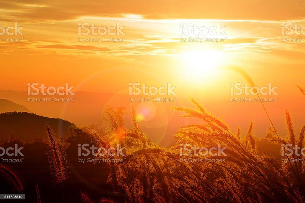 Beautiful view fair sun light stock photo