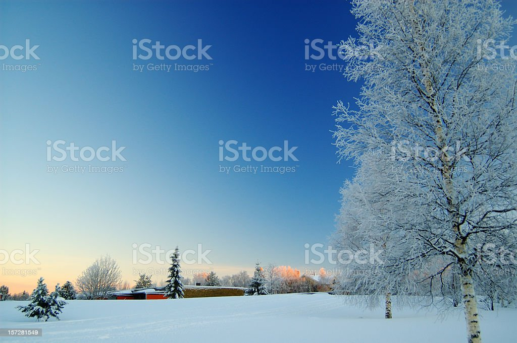 A beautiful view of a field during winter royalty-free stock photo