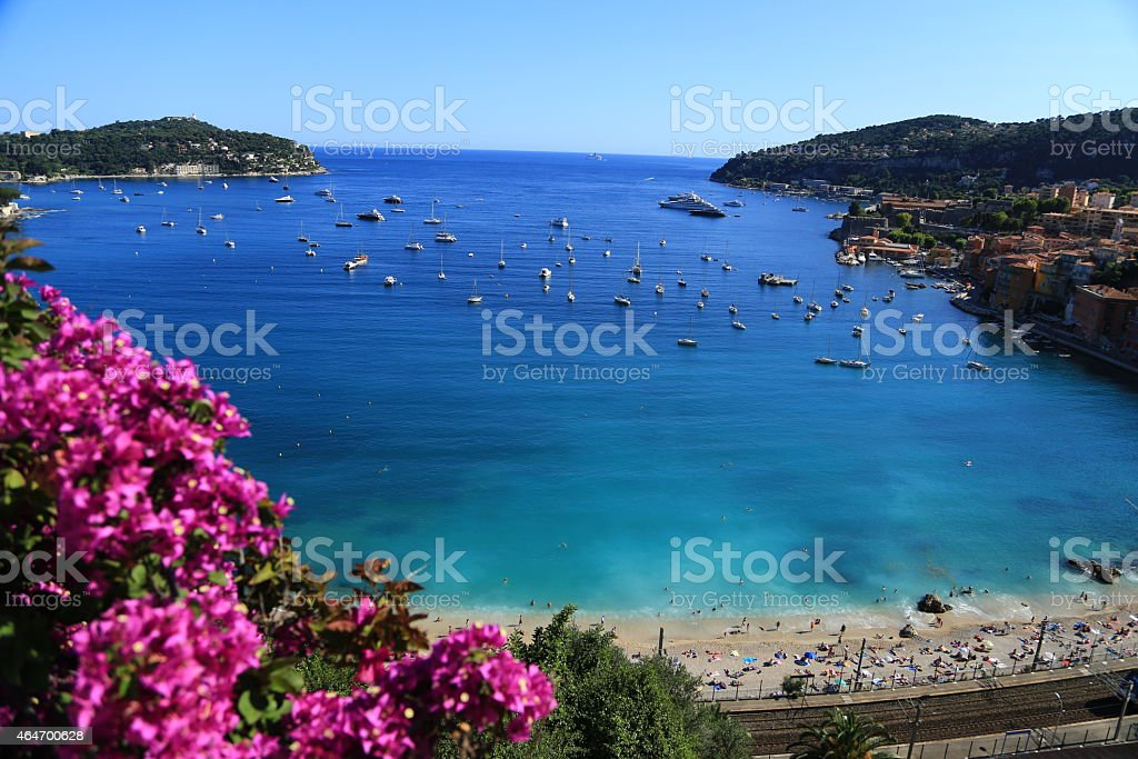 A beautiful view of blue sea and pink flowers stock photo