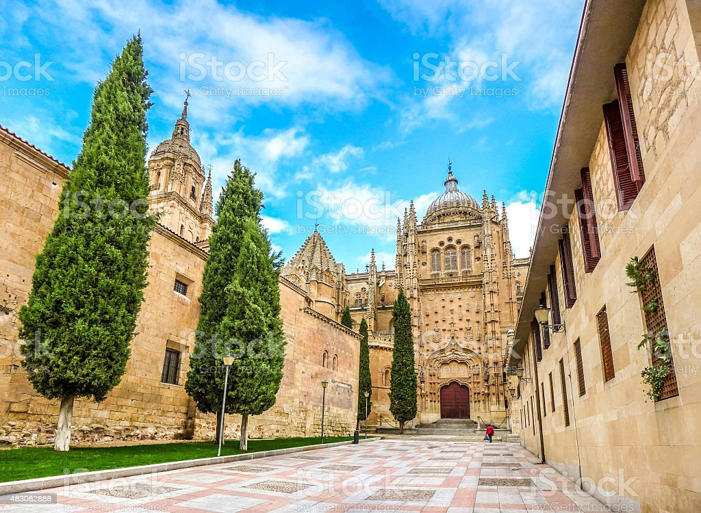 Beautiful view of Cathedral of Salamanca, Castilla y Leon region stock photo