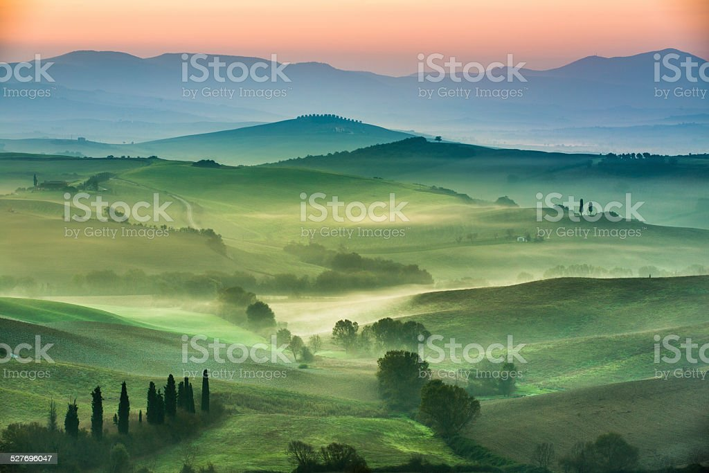 Beautiful view of green fields and meadows at sunset stock photo
