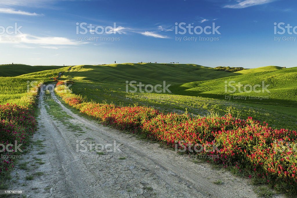 Beautiful view of green fields and meadows at sunset, Tuscany royalty-free stock photo