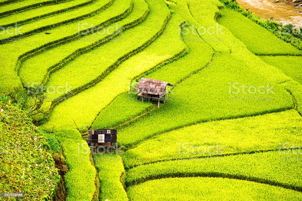 beautiful view of house and village in rice terrace stock photo