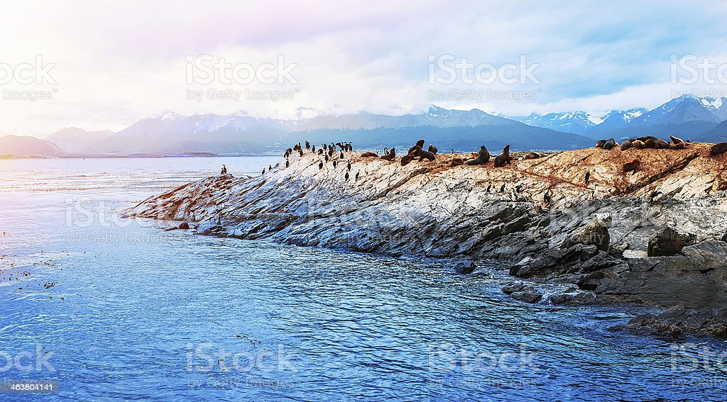 A beautiful view of the beagle channel stock photo