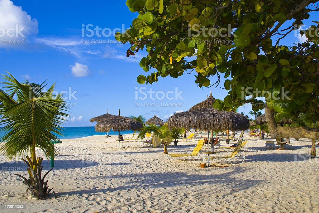 Beautiful view of the eagle beach in Aruba stock photo