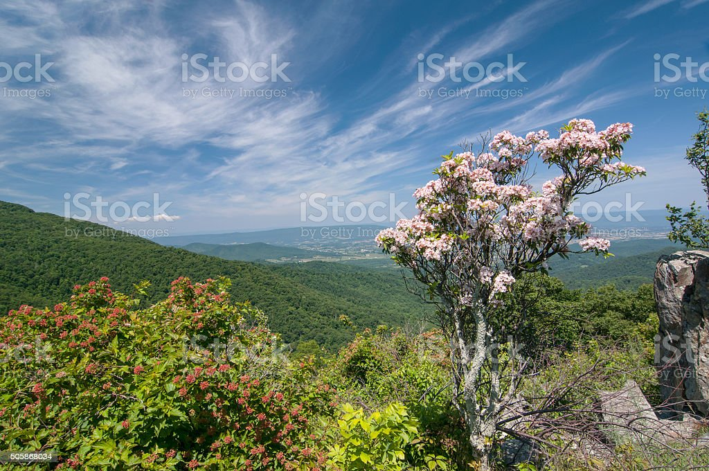 Beautiful view of the mountains stock photo